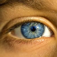 Protéger vos yeux de la fatigue de votre écran